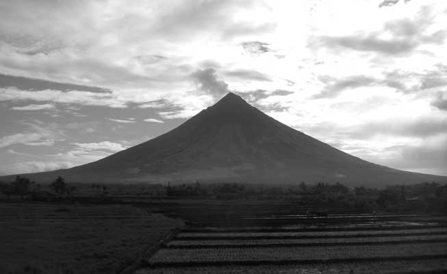 Mount Mayon towers above rice paddies on the island Luzon of the Philippines.<br />(Credit: Brett Scheffers)